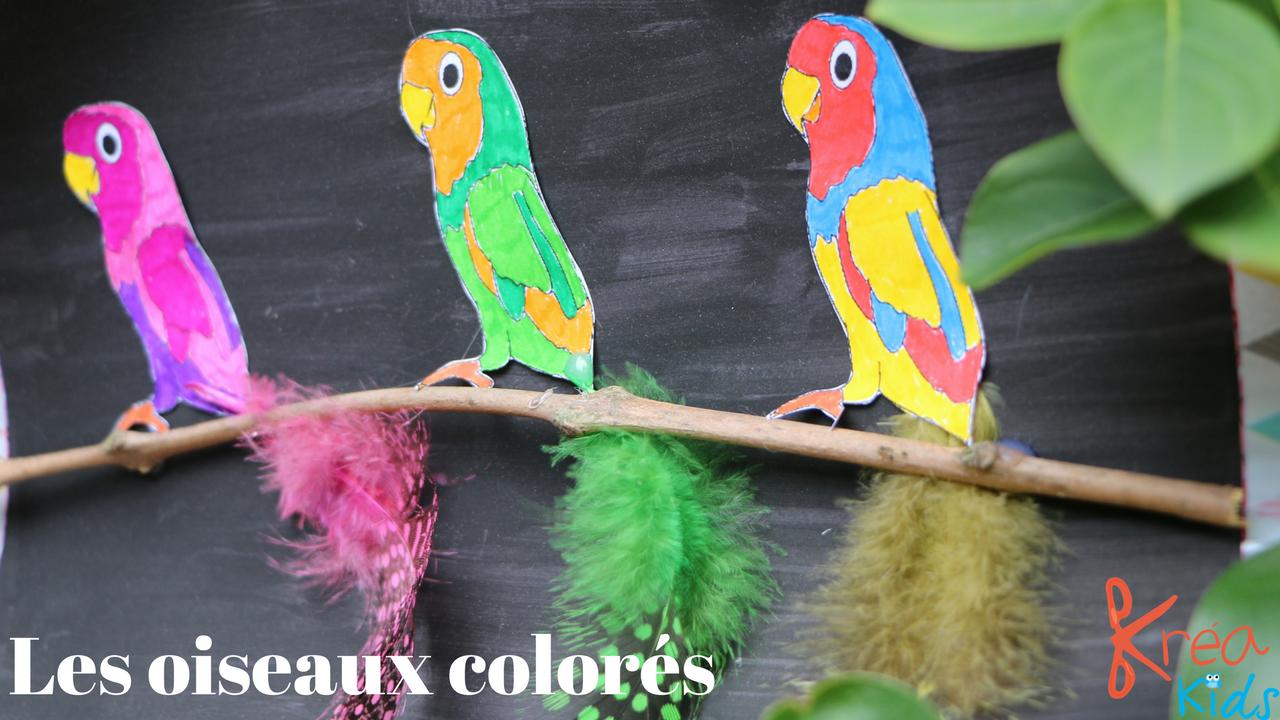 activit manuelle des oiseaux color s pr t s 39 envoler kreakids. Black Bedroom Furniture Sets. Home Design Ideas